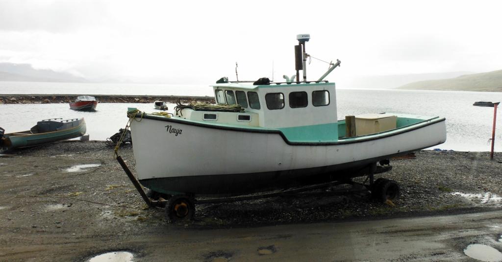 DSCF8482 (1024x535)
