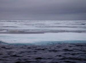 Ice Pack near For Ross.